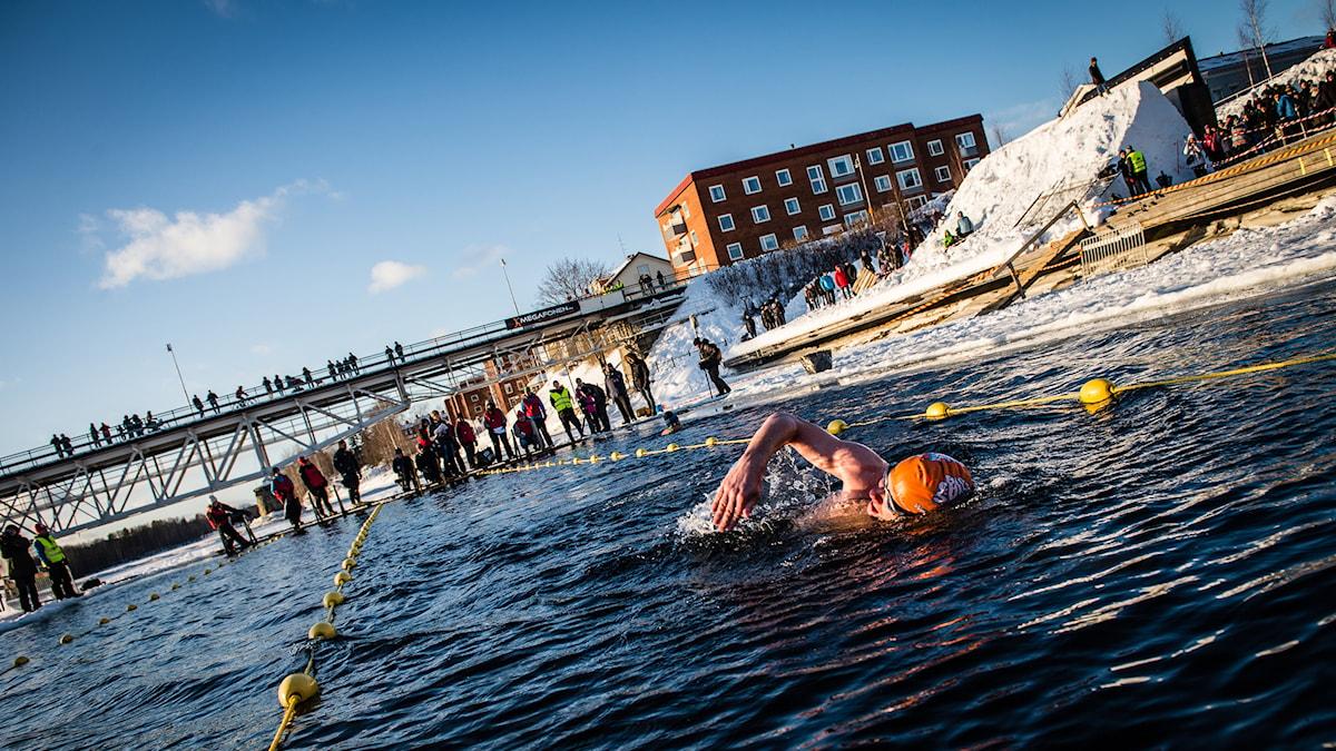 Vintersimmare i Skellefteå 2015. Foto: Ted Logadt/Visit Skellefteå