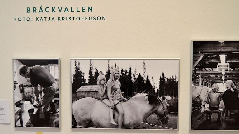 Bilder från utställningen Inland. Foto: Peter Öberg, Sveriges Radio.