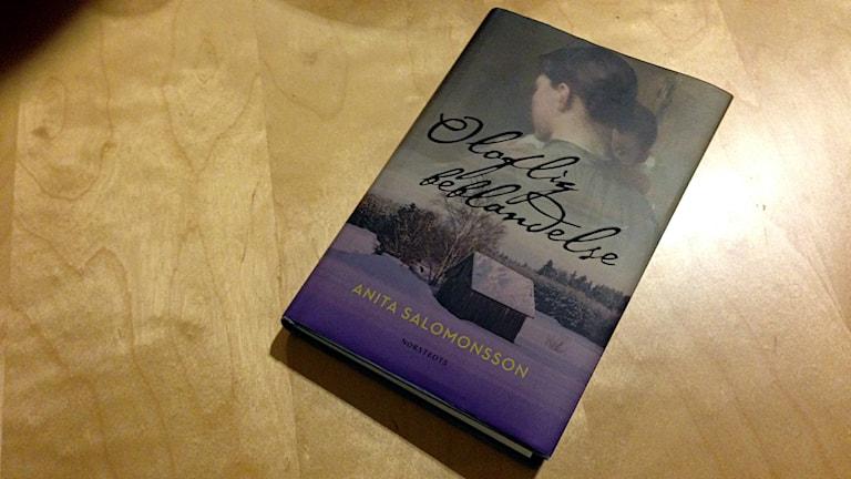 ANitas nya bok