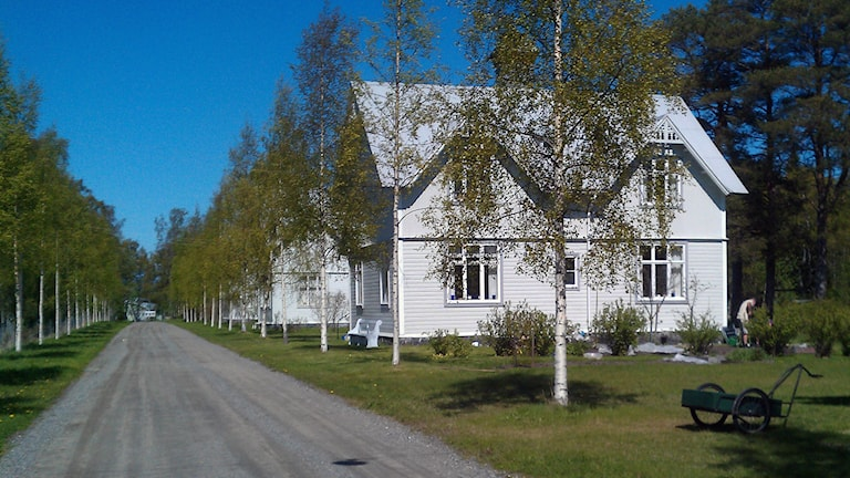 Långgrundsgatan, Norrbyskär. Foto: Peter Öberg, Sveriges Radio.