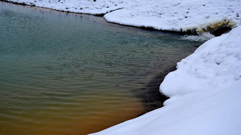 Det gula i vattnet är föroreningarna som stannar i dammen medan vattnet rinner vidare ut i sjön Storjuktan. Foto: Magdalena Martinsson/Sveriges Radio