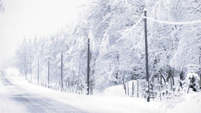 En dygnsmedeltemperatur under nollan i fem dagar i sträck är det som krävs för att det ska vara meterologisk vinter. Foto SVT Bild.