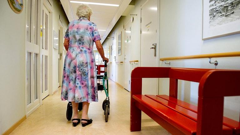 sy98d7e4 Kvinna med rullator i en korridor. Foto: Jessica Gow/TT