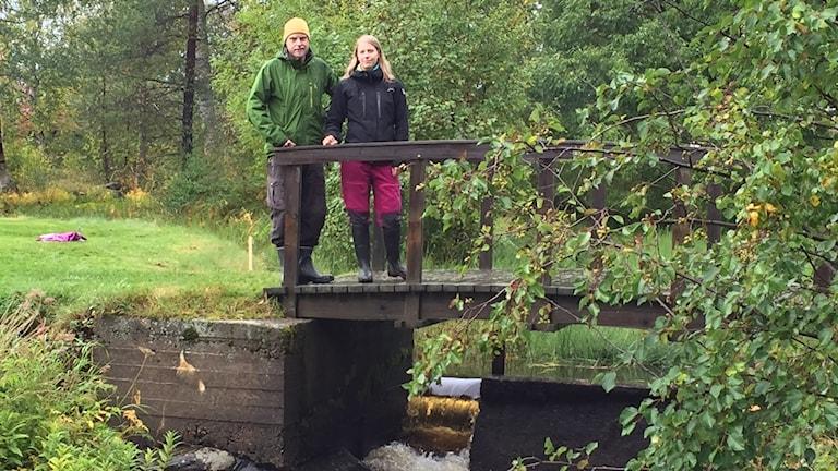Johannes Lindberg, Bureälvens Nedre FVO och Malin Isaksson, biolog Skellefteå kommun står på en träbro över den övre av två dammar.