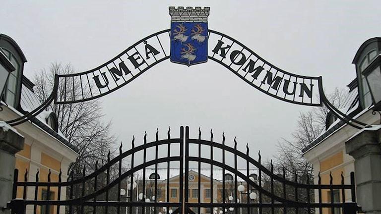 Entrén till stadshuset i Umeå kommun. Foto: Peter Öberg, Sveriges Radio.