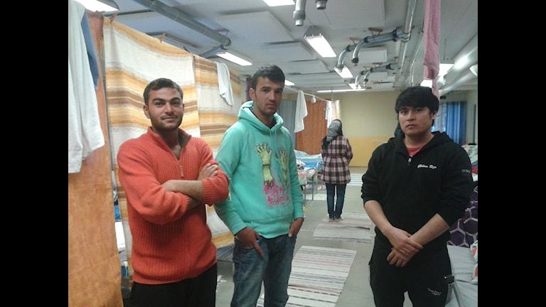 Ibrahim Alrahmo, Vahid Sharafi och vår tolk Gholam reza Jafari. I bakgrunden ser du också Shala Sharifi, hon ville inte synas alltför väl på bilden. Foto: Linnéa Hedelilja/Sveriges Radio
