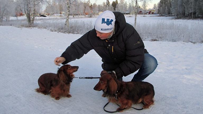 Åsa Holmgren med taxarna Laban och Tello.
