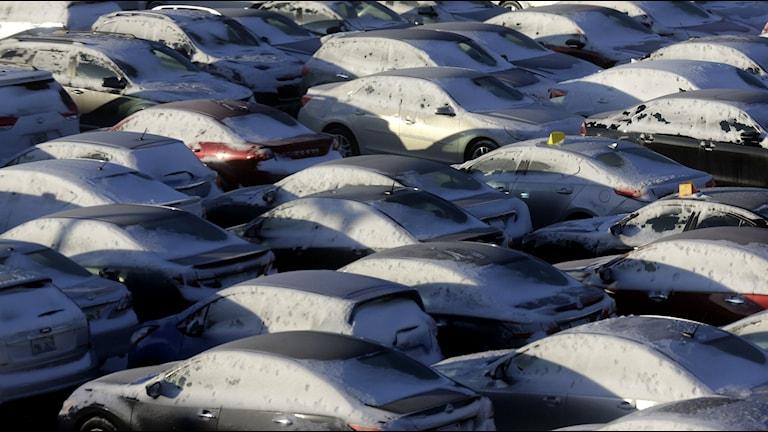 Flera bilar på en snöig parkering