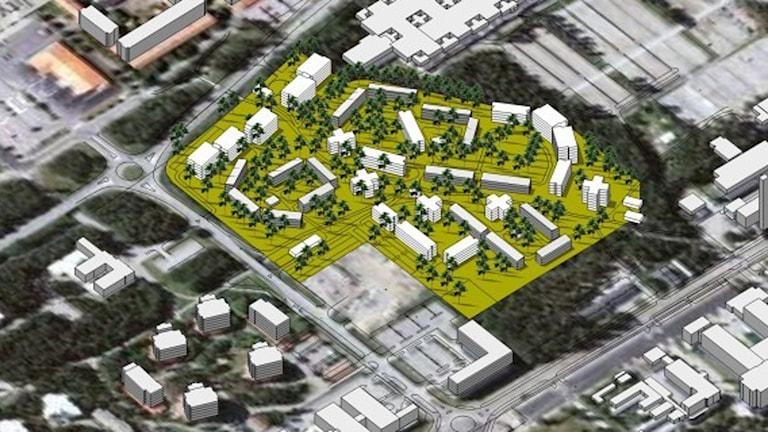 Balticgruppen och Wallenberg Foundation planerar att bygga mellan 800-1000 små lägenheter i skogsområdet vid Tvistevägen. Foto Umeå kommun.