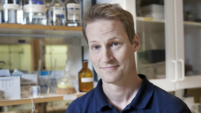 Fredrik Almqvist, professor i organisk kemi vid Umeå Universitet. Foto: Johan Gunséus/Synk.