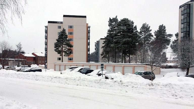 Berghem, Umeå. Foto: Peter Öberg, Sveriges Radio.