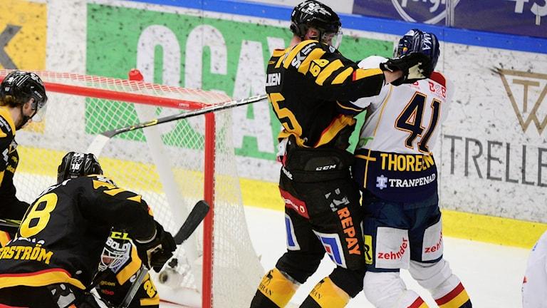Alexander Urbom, back i Skellefteå AIK