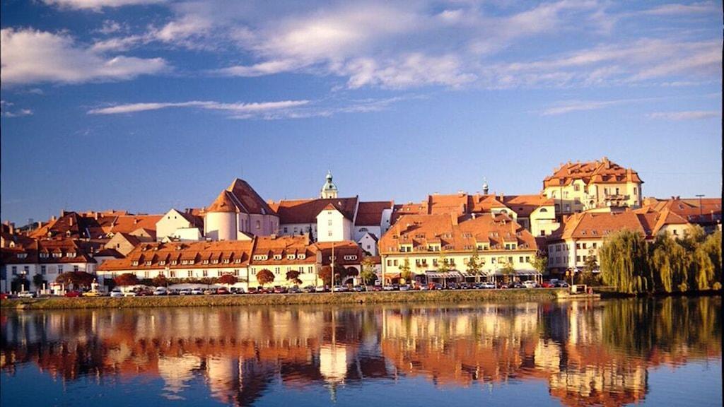 Maribor, Kulturhuvudstad i Europa 2012. FOTO: Slovenska Turistbyrån.