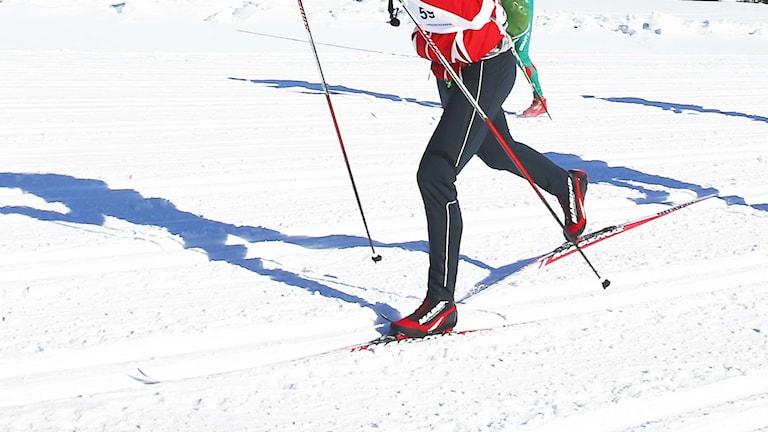 skidor på snö