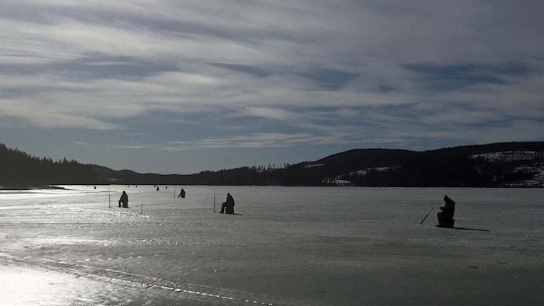 Pimpelfiskare ute på isen