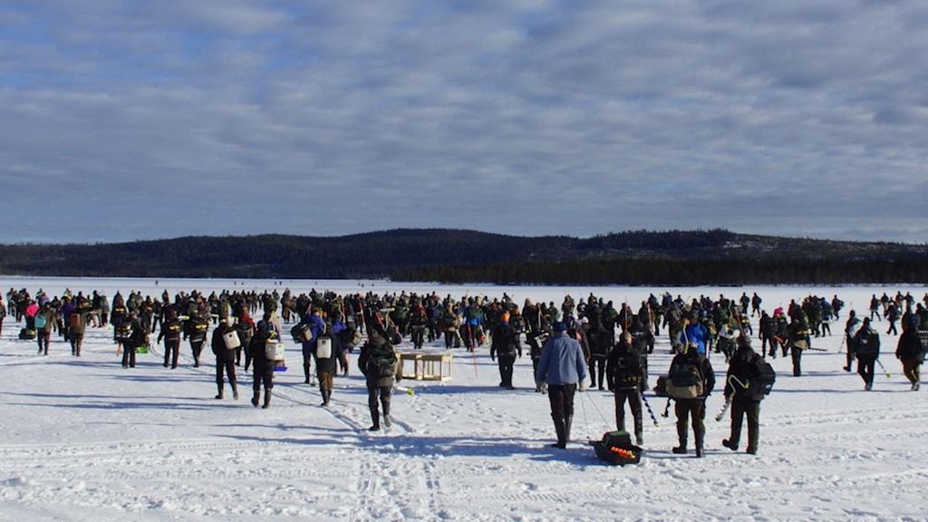 En imponerande syn då 96 lag med närmare 400 deltagare tågar iväg ut på isen. Foto Åke Runnman.