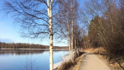 Mikael Hermansson/SR Västerbotten