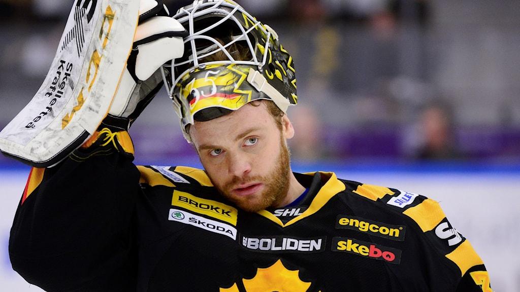 Markus Svensson , målvakt Skellefteå AIK