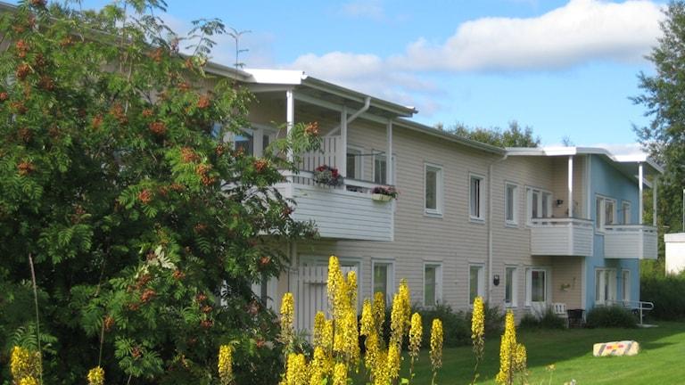 De äldre på Blåmesen i Åsele är oroliga över att de ska bli isolerade efter att deras gemensamma lokaler nu ska användas av arbetsmarknadsenheten.
