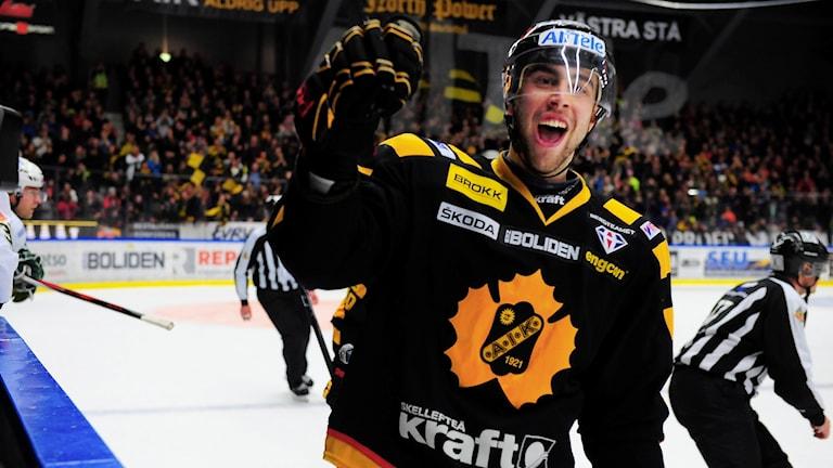 Johan Alm,  back som återvänder till Skellefteå AIK