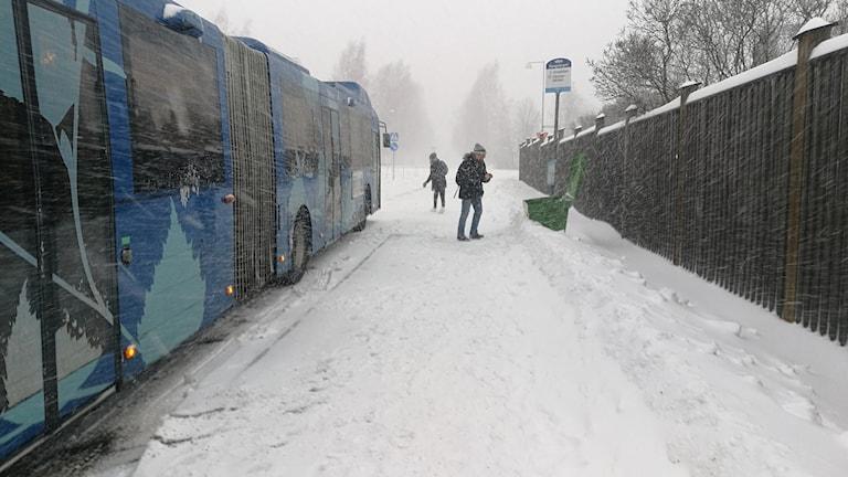 Buss som kört fast . Foto: Emanuel Eriksson, Sveriges Radio.
