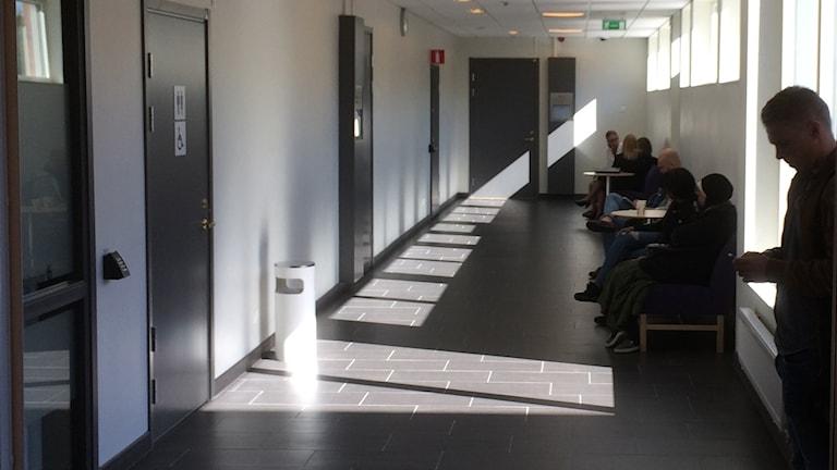 Korridor på Umeå tingsrätt. Foto: Peter Öberg, Sveriges Radio.