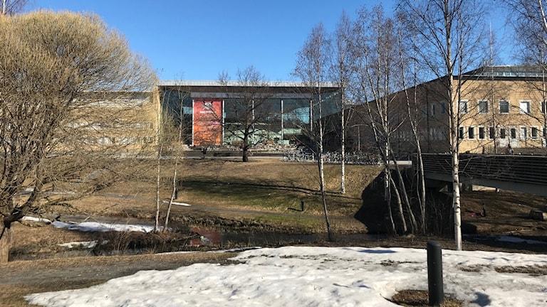Umeå universitet exteriör vår