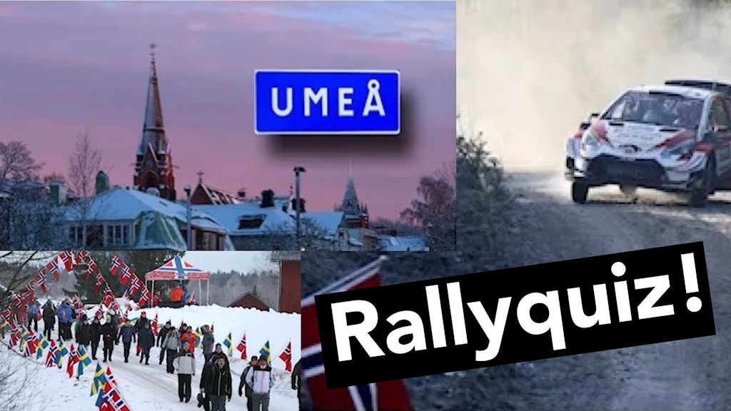 split rallybilder