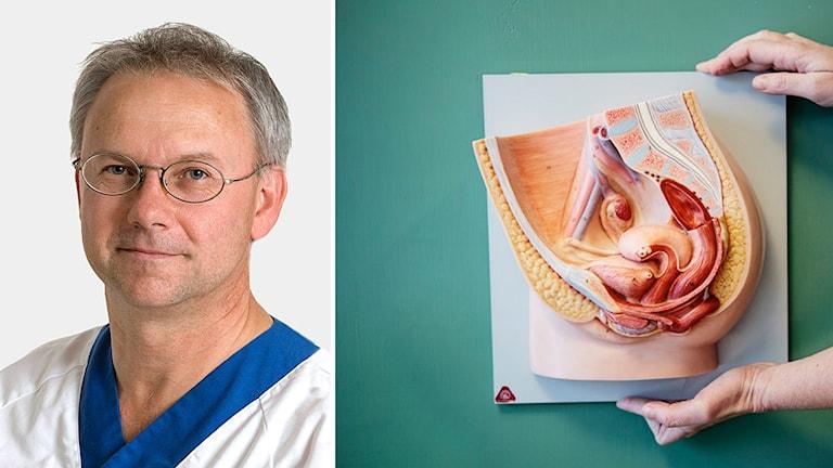 Porträttbild på överläkaren Matts Olovsson