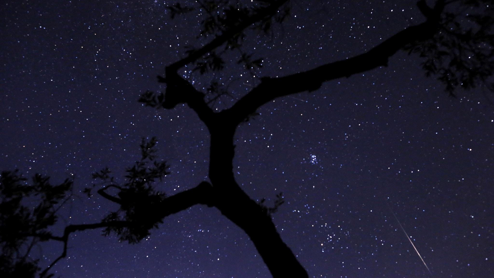 Stjärnräkning ska kartlägga ljusföroreningar i landet