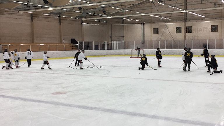 Skellefteå AIK sista ispass före premiärmatch