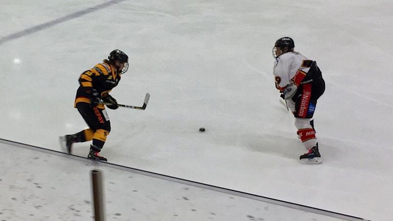 Emelie Jönsson jagar efter pucken i premiärmatchen mellan Skellefteå AIK och Luleå.