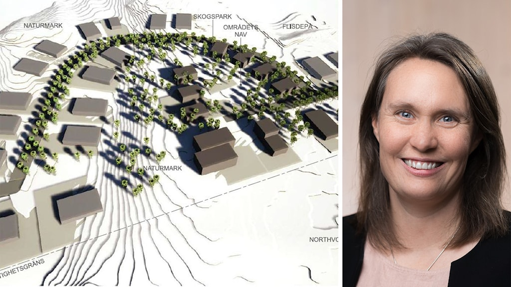 En bildsplitt på Anja Palm, näringslivschef Skellefteå kommun, och skissbild på nya området för Bergsbyns företagspark.