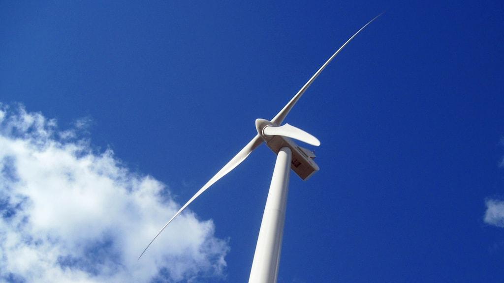 Dyrt för kommuner med vindkraftverk