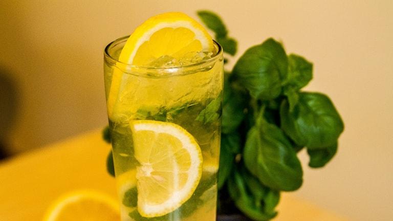 En drink med citroner och basilika