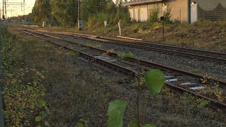Två järnvägsspår går mot solnedgång.