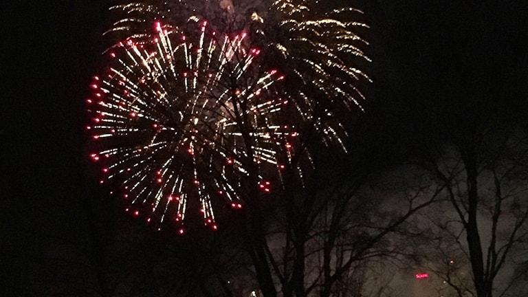 Nyårsfyrverkerier över Umeå
