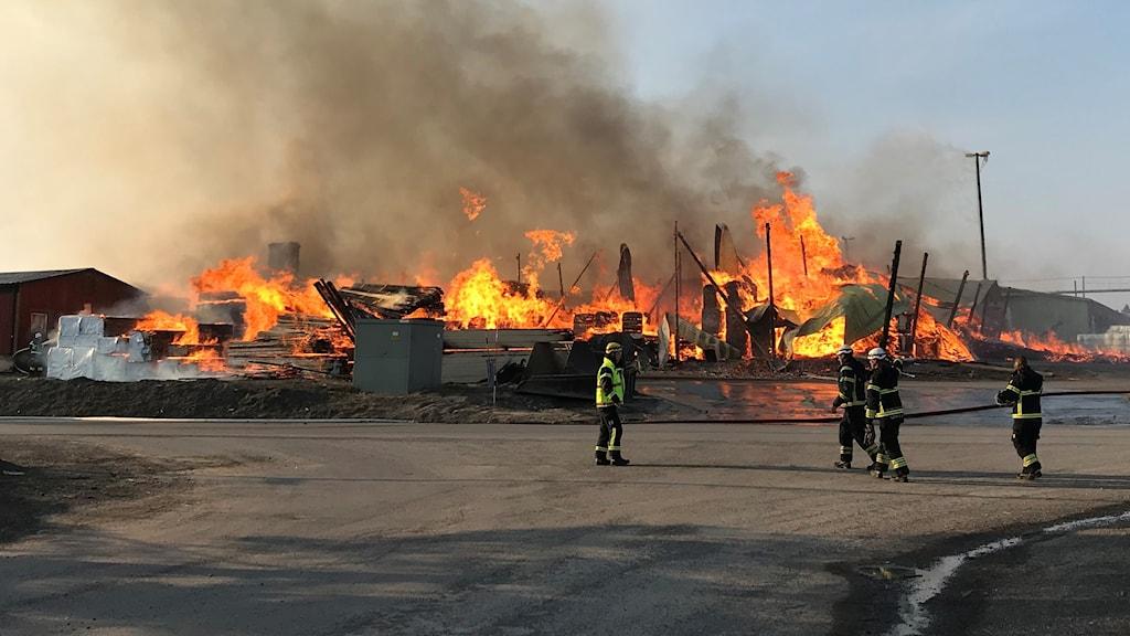 Fyra brandmän står framför en stor brand med öppna lågor.