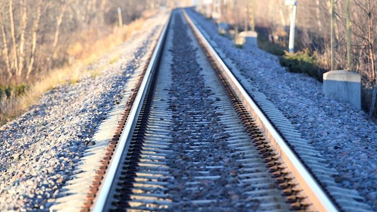 Järnvägsräls som försvinner i horisonten