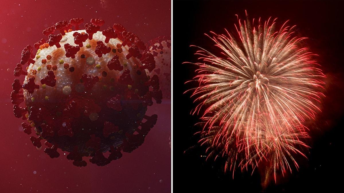 Montage med ett coronavirus och ett fyrverkeri