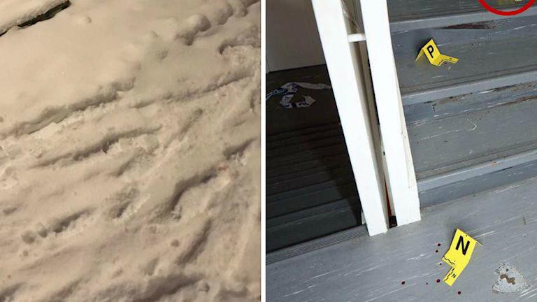 Fotspår i snö, vissa med blodfläckar i, En grå trappuppgång med markerade blodfläckar.