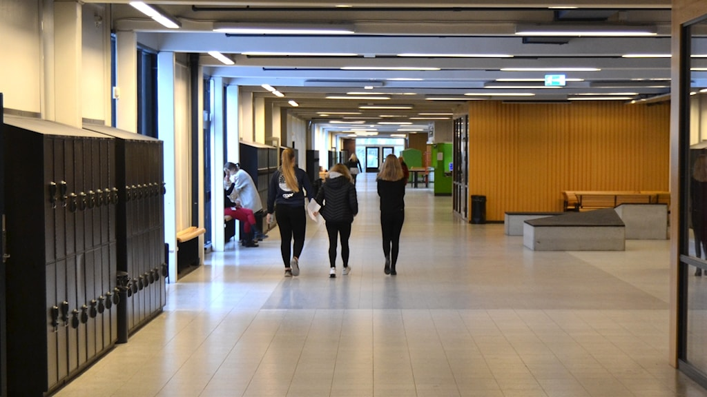 Skolkorridor, Dragonskolan, Umeå. Foto: Peter Öberg, Sveriges Radio.