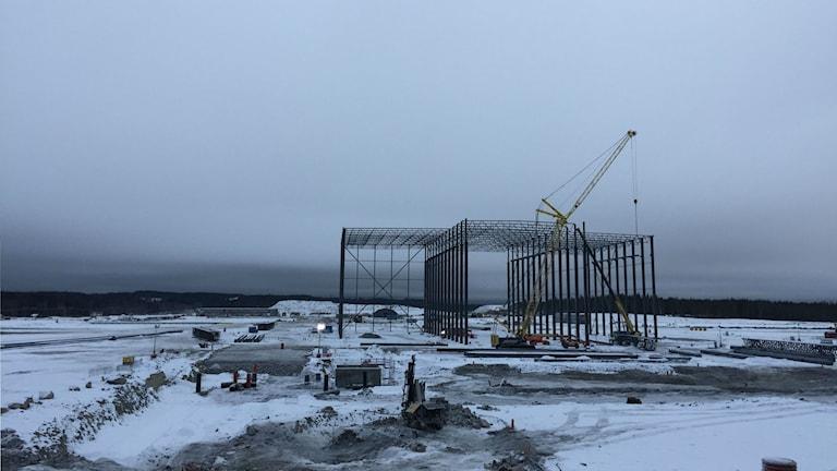 Snön har lagt sig och en metallstomme har rests 6/7 2019 vid bygget av Northvolts batterifabrik i Skellefteå.