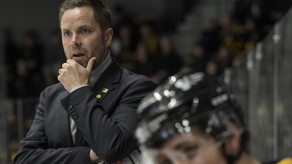 Stefan Hedlund, som är tränare Skellefteå AIK ser fundersam ut under match i herrarnas högsta liga i ishockey.