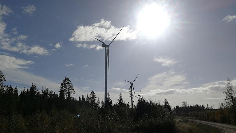 Vindkraftverk utanför Hörnefors