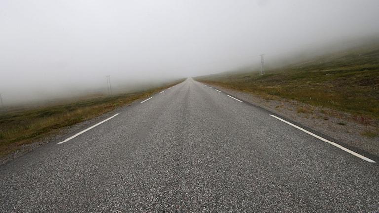 En väg som försvinner in i dimman