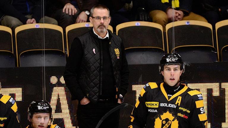 Tränare Tommy Samuelsson och Joakim Lindström båda i Skellefteå AIK står i avbytarbåset och tittar ut på hockeyplanen.
