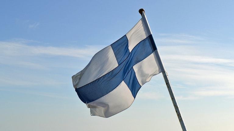 Finlands flagga. Foto: Peter Öberg, Sveriges Radio.