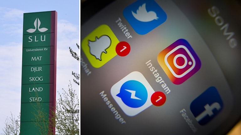 SLU-skylt och en mobil med sociala medier