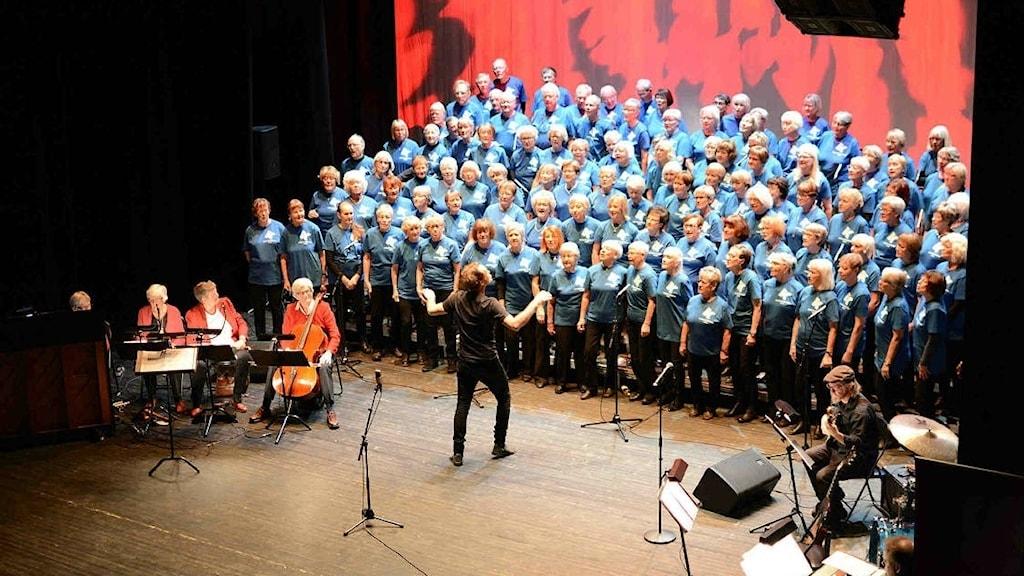 Generationskören firar 10 år Foto: Anders Magnusson